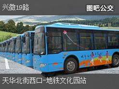 北京兴微19路上行公交线路