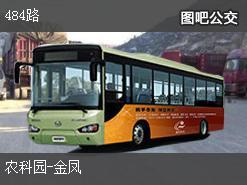 重庆484路下行公交线路