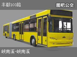 重庆丰都103路上行公交线路
