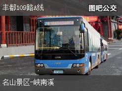 重庆丰都109路A线上行公交线路