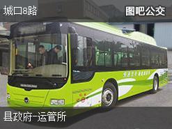 重庆城口8路上行公交线路