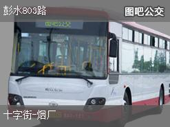 重庆彭水803路上行公交线路