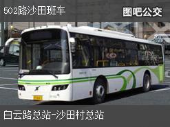 广州502路沙田班车下行公交线路