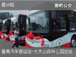 广州番16路上行公交线路