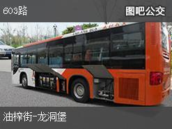 贵阳603路上行公交线路