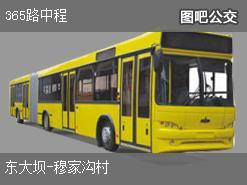 哈尔滨365路中程上行公交线路