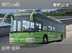 香港城巴12m路公交线路