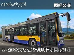 昆明919路A线支线上行公交线路