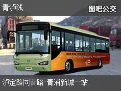 上海青泸线上行公交线路