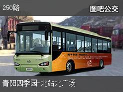 沈阳250路上行公交线路