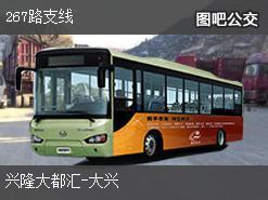 沈阳267路支线上行公交线路