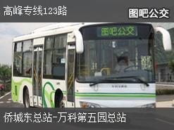 深圳高峰专线123路上行公交线路