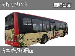 深圳高峰专线12路上行公交线路