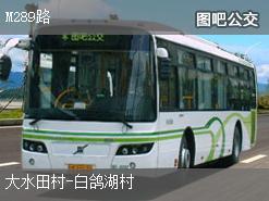 深圳M289路上行公交线路