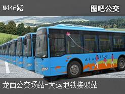 深圳M446路上行公交线路
