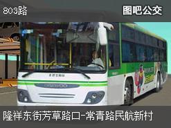 武汉803路上行公交线路