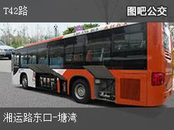 株洲T42路上行公交线路